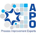 Lean Six Sigma Helper by APO