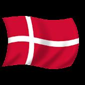 Fan Flag DK