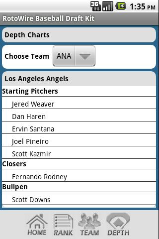 2013 Fantasy Baseball Draft - screenshot