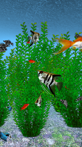 Freshwater 3D HD LWP