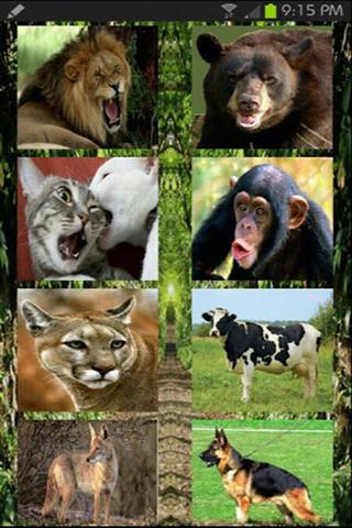 اصوات الحيوانات - screenshot