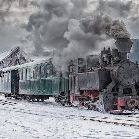 Pony Express by Pascal Hubert - Transportation Trains (  )