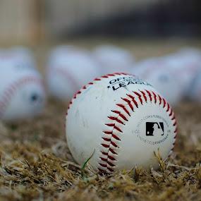 Baseballs by Beckie Caughman - Sports & Fitness Baseball ( season, baseball, outdoors, sports, bokeh,  )