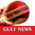 Gulf News Cricket icon