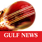 Gulf News Cricket icon