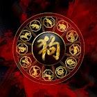 Chinese Zodiac Live Wallpaper icon