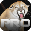 Cougar Call Pro icon