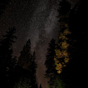 Just out messing around in the middle of the night by Michael White - Landscapes Starscapes