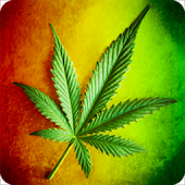 Marijuana Rasta LWP Battery
