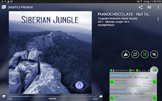 Screenshot of Muzecast Music Streamer Pro