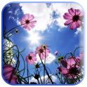 3D flowers wallpaper icon