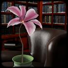 Fleur élégante 3 icon