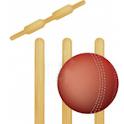Ruby Cricket icon