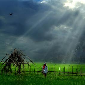 Pulang by Cucu Fuang - Digital Art People