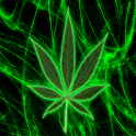 Pot Leaf Keyboard FREE! logo