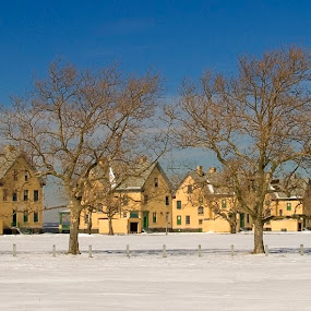 Row of houses and trees by Bill Morris - Buildings & Architecture Other Exteriors ( blus sky, houses, snow, buildings, trees )