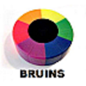 NHL Bruins Assistant Live logo