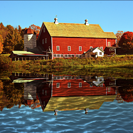 Big Red Barn by Janet Lyle - Uncategorized All Uncategorized ( barn, autumn, fall )