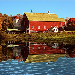 Big Red Barn by Janet Lyle - Uncategorized All Uncategorized ( barn, autumn, fall )