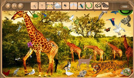 Safari Hidden Objects