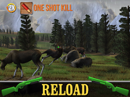 Screenshot of Big Buck Hunter Pro Tournament