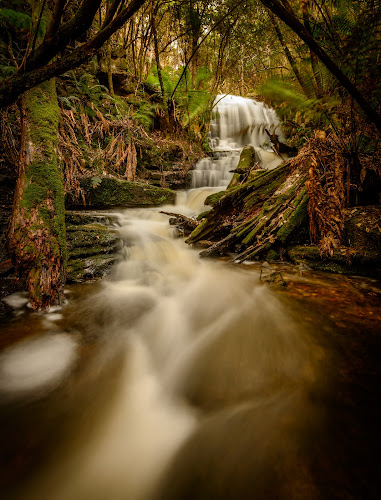 the flow by Alan Wright - Landscapes Waterscapes