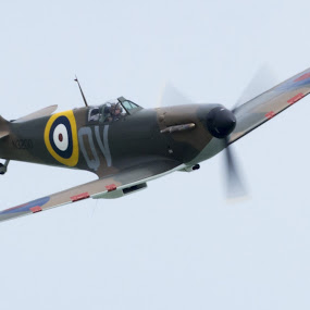 Spitfire by Peter Greenhalgh - Transportation Airplanes ( spitfire, wwii, airplane, raf, fighter, eastbourne, air show )