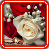 Romantic Hearts HD LWP