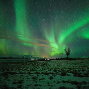 Aurora and clouds by Marius Birkeland - Landscapes Starscapes ( sky, northern lights, aurora borealis, aurora, norway,  )