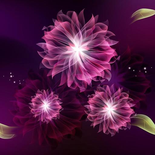 ネオンの花ライブ壁紙