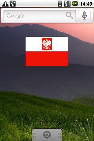 Polish Flag Widget - screenshot