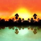 Hidden Paradise Theme 480x800