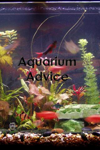 Aquarium Tips and Tricks - screenshot