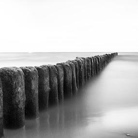 Buhne by Markus Busch - Landscapes Beaches