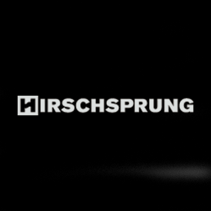 The Hirschsprung Collection