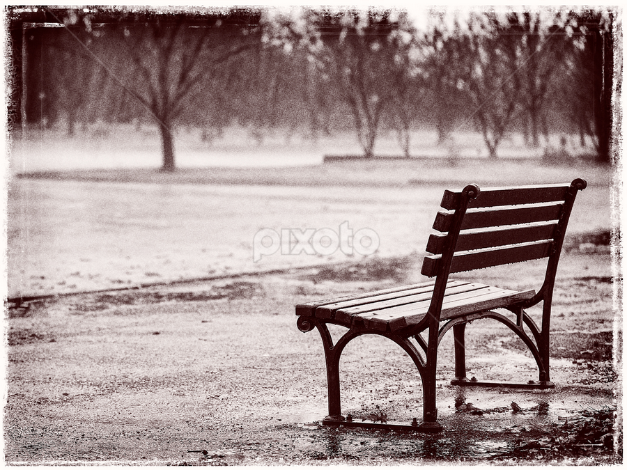 Bench in the Rain by Kevin Egan - City,  Street & Park  City Parks (  )