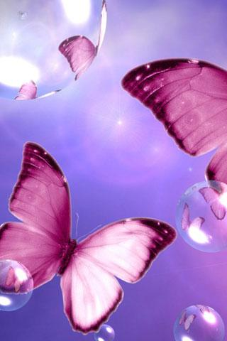 Download The 3d Butterfly Live Wallpaper Android Apps On Nonesearch Com