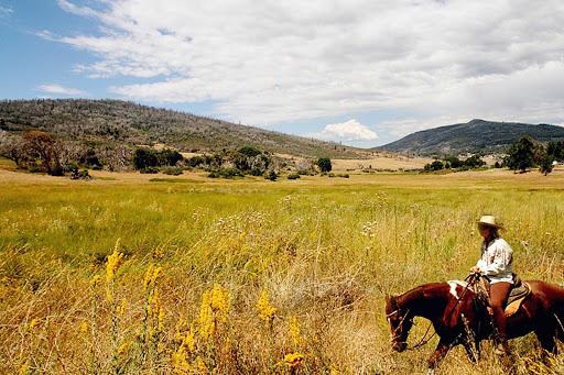 San-Diego-Cuyamaca-horseback - A horseback rider in Cuyamaca near San Diego.