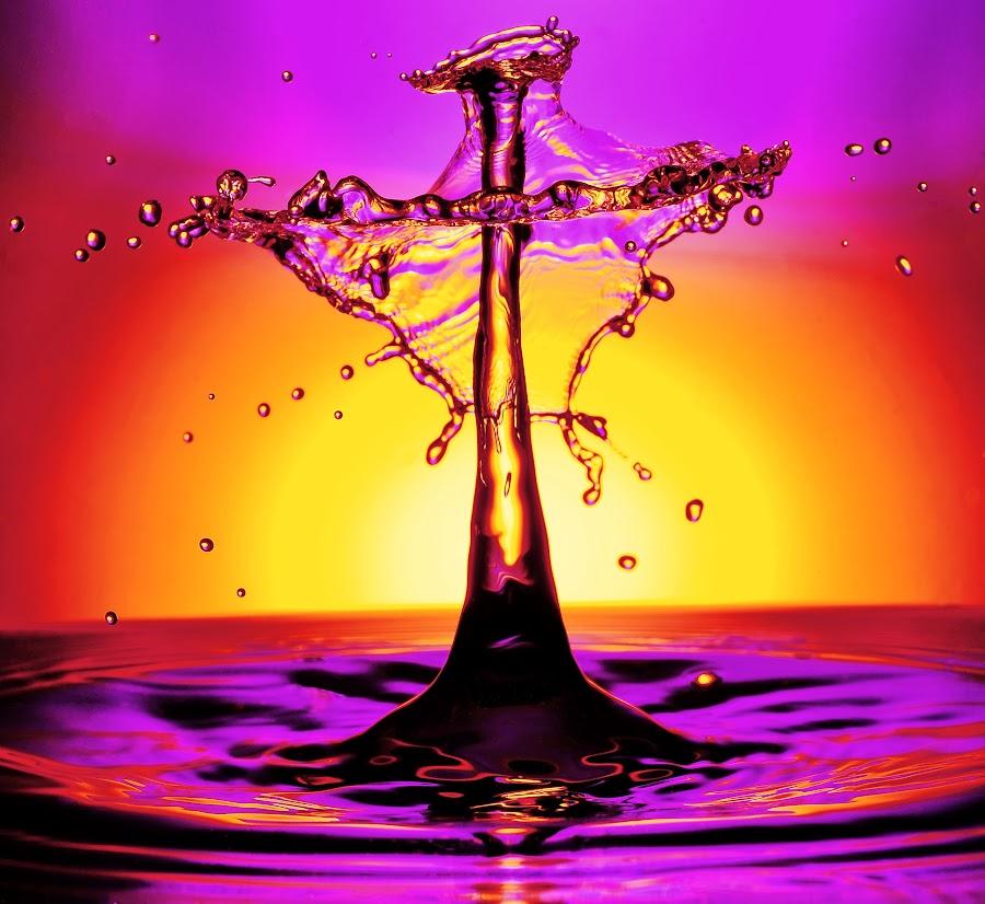 Watersplash! by Helge Brede - Abstract Water Drops & Splashes ( macro, watersplash, droplets )