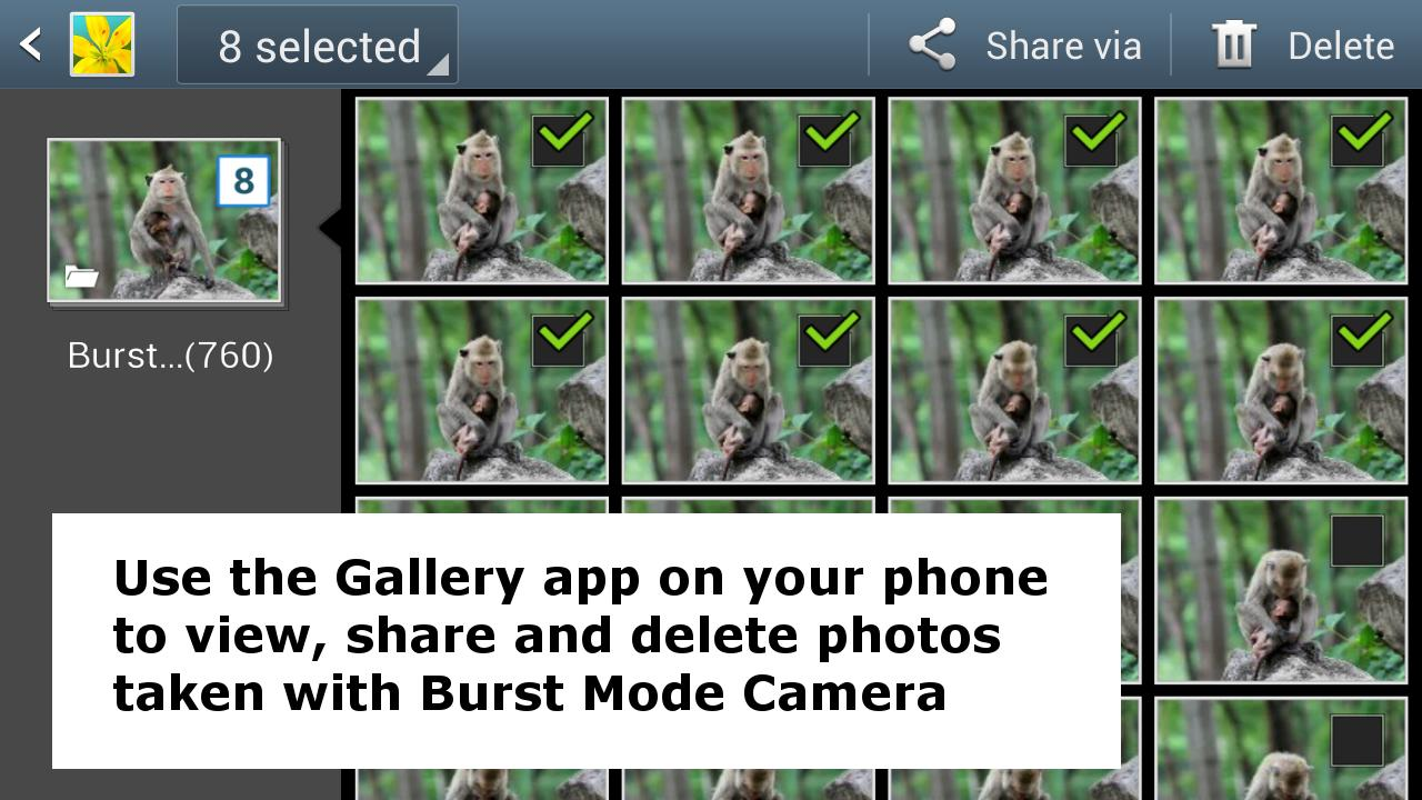 Burst Mode Camera - screenshot