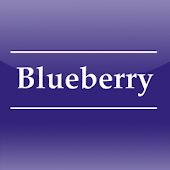 Blueberry Nursery