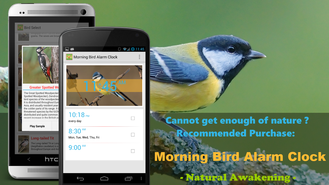 Bird Alarm Clock - screenshot