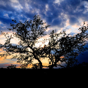 Cibolo Canyon Sunset by Larry Crawford - Landscapes Sunsets & Sunrises ( clouds, silhouette, sunset, texas, places,  )