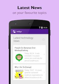 Indigo Virtual Assistant Screenshot 2
