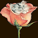 Cat Rose Live Wallpaper