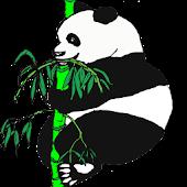 Flashlight Panda