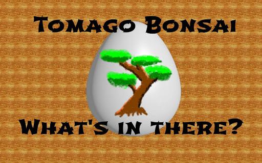 Tomago Bonsai