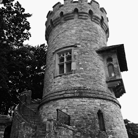 Appley Tower by Deborah Russenberger - Black & White Buildings & Architecture ( b&w )