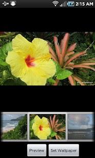 Kauai Flowers Pro screenshot