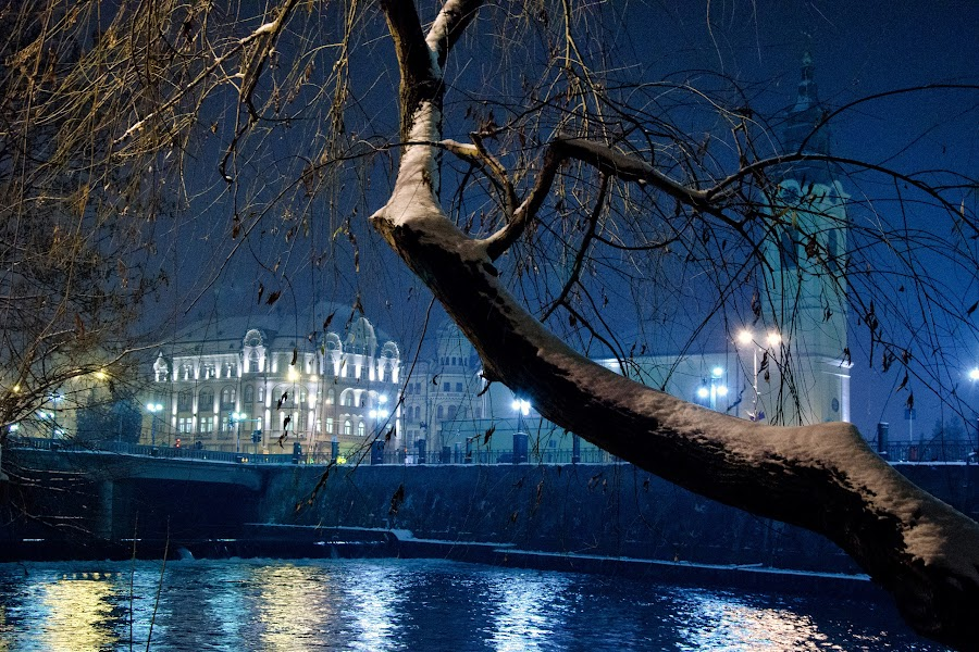 Oradea January Night by Marcel Socaciu - City,  Street & Park  Night
